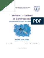 TD (1)