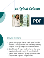Injury to Spinal Cord