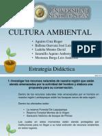 culturaambiental-111005184713-phpapp02