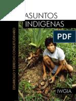 Asuntos Indígenas (buen vivir y derechos)