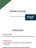 Reparo+Tecidual