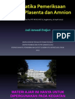 HOGSI USG Pra PIT V. Sistematika Pemeriksaan Kelainan Plasenta & Amnion, JJE, 20120426