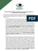 Pronunciamiento sobre las bases para la Evaluación Ambiental