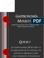 Gastronomía Molecular.ppt