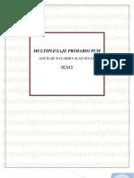 Multiplexaje Primario Pcm