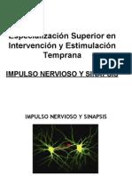 2 Impulso Nervioso
