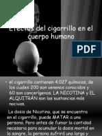 efectosdelcigarrilloenelcuerpohumano-.297124159[1]