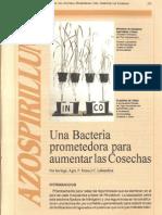 Una Bacteria Prometedora Para Aumentar Las Cosechas