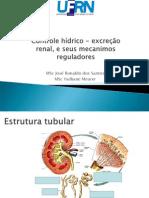 Hypothalamo Pituitary Vasopressina