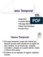 Hueso Temporal Modificado