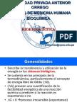 Bioenergética 2012