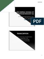 Molecular Biology Central Dogma (II)