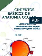 Conocimientos Básicos de Anatomía Ocular