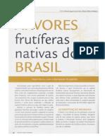 Árvores Frutíferas do Brasil