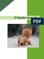 Esquilo Vermelho[1]
