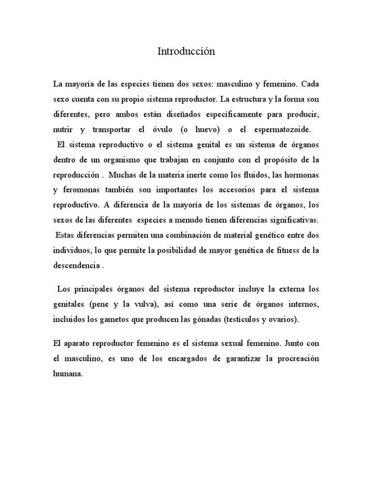 Contemporáneo Anatomía Y Fisiología Del Seno Femenino Composición ...