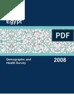 DHS egypt 2008