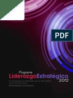Programa Liderazgo Estrategico 2012 Triptico