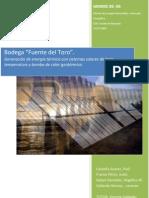 EOI_ProyectoMERME_BodegaFuenteToroEnergiaTerminca_2009