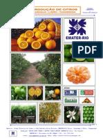 Apostila Curso Citrus