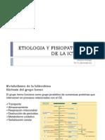 Fisiopatologia de La Ictericia