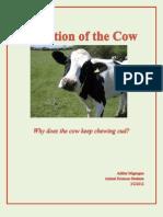 Technical Description Paper