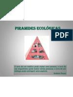 Pirâmides ecológicas 2