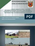 Estudio de Riesgo Ambiental Nivel 1