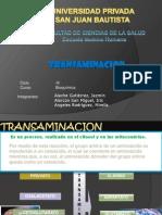 Transaminacion de Aminoacidos