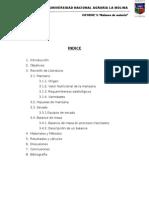 Informe 1 de Introduccion 2012