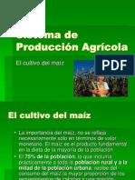 Pro Ducci on Agricola