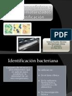 Medios cromogénicos y paneles miniaturizados de identificación_2