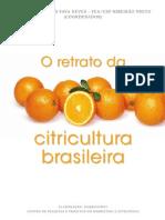Retrato Citricultura Brasileira Marcos Fava