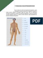 Anatomia y Fisiologia Delsistemanervioso