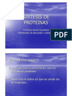 Sintesis de Las Proteinas