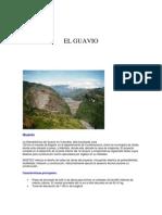 EL GUAVIO