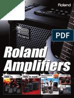 Roland Amplifier Catalog 2011