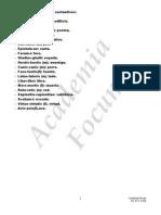 Sustantivos en latín para declinar 1º, 2ª y 3ª