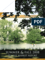 Summer 08 Report