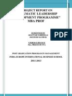 Pldp Report- Mba Prof