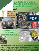 Usare Olio Di Colza Come Biodiesel Per Auto