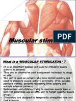 Muscular Stimulator