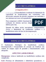 doenças_circulatórias