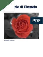 Il Puzzle Di Einstein