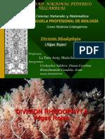 Rodophytas
