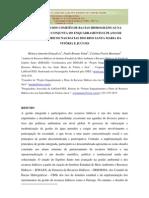 Artigo Plano Enquadramento Santa Maria e Jucu