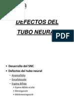 Defecto Del Tubo Neural
