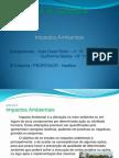 impactos ambientais João david