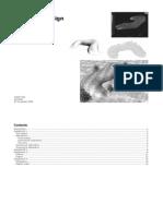 Free Form Design - Verslag