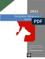 Dermatitis Alérgicas o Autoinmunes